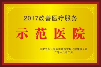 2017改善医疗服务示范医院